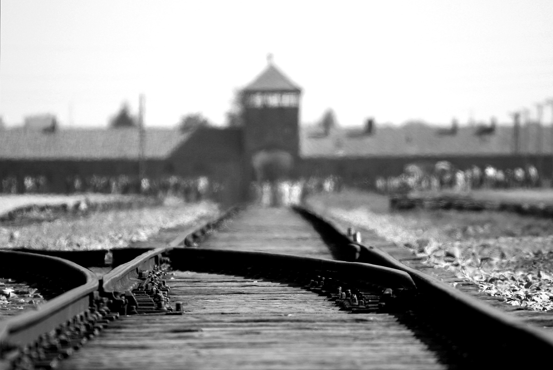 """Legislature and the Holocaust – how the """"Rule of Law"""" paved the way and garnered support for the murder of more than six million (Long Read)"""